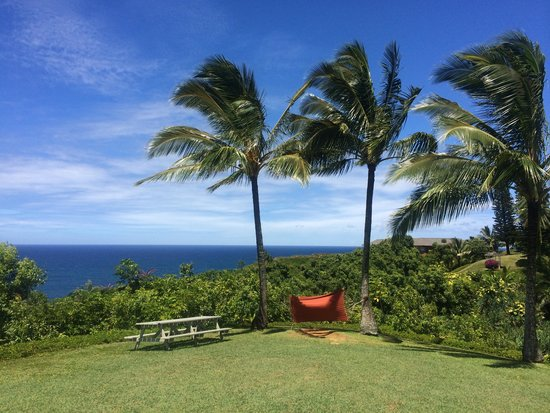 Cliffs at Princeville: View from the grounds