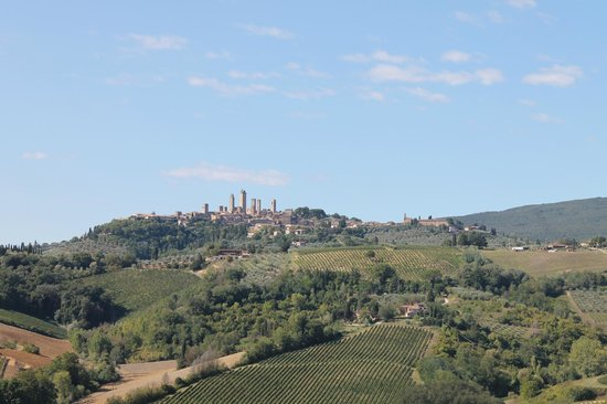 Chianti Wine Tour : View of San Gimignano from 1st Vineyard