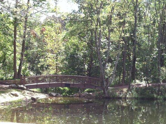 Lotus Pond Bridge Picture Of Pittsburgh Botanic Garden Oakdale Tripadvisor