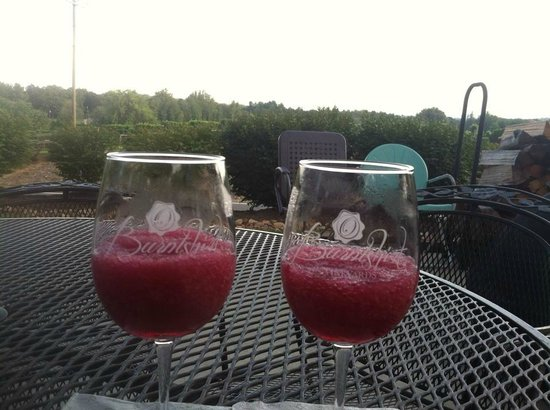 Burntshirt Vineyards: Wine-a-Tini's