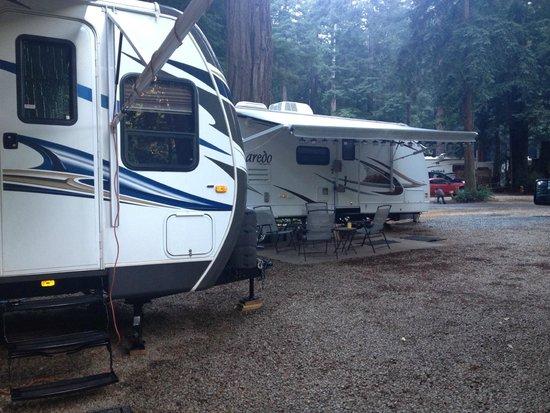 Santa Cruz Redwoods RV Resort   UPDATED 2017 Campground Reviews (Felton,  CA)   TripAdvisor