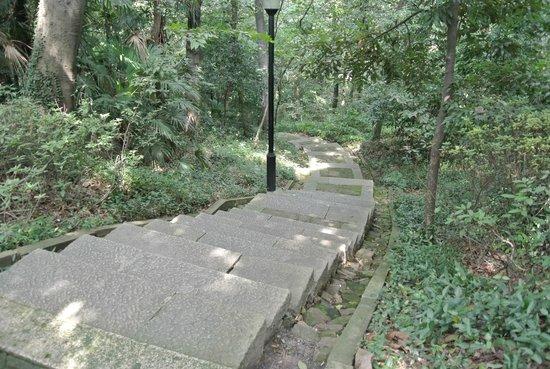 Zhongshan Park: 中山公園 山道