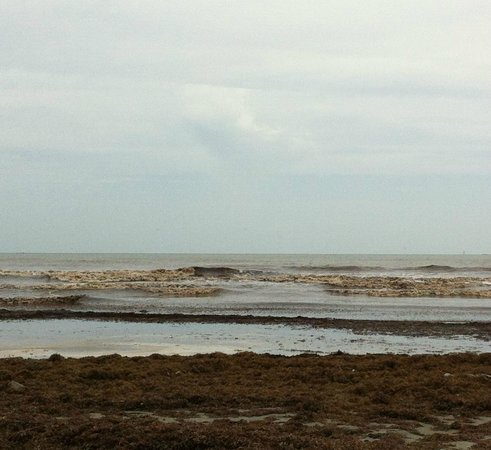 Port Aransas Beach: Not a beach week.