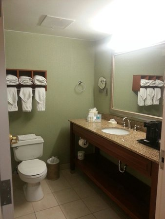 Hampton By Hilton Miami-Coconut Grove/Coral Gables: Clean Bathroom