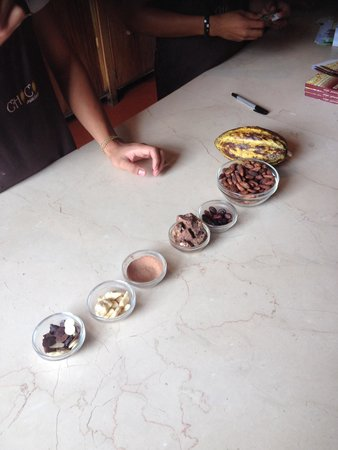 ChocoMuseo: Phases of processing chocolate