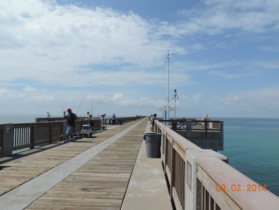 Needle fish picture of russell fields city pier panama for Panama city beach fishing pier