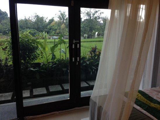 Anini Raka Resort & Spa: View from the room