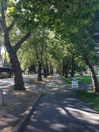 University of Washington: Campus