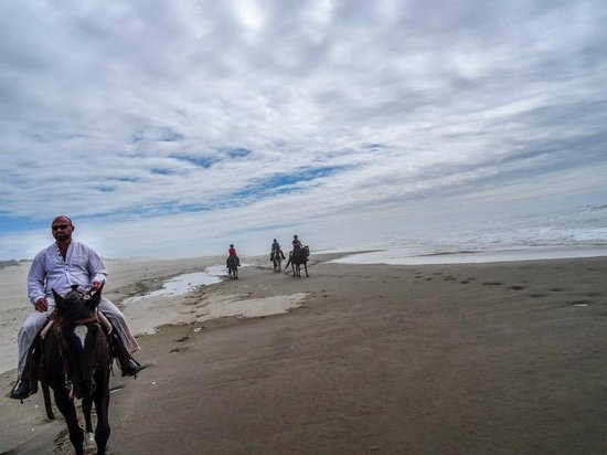 Florence, OR: Beach Ride at C&M