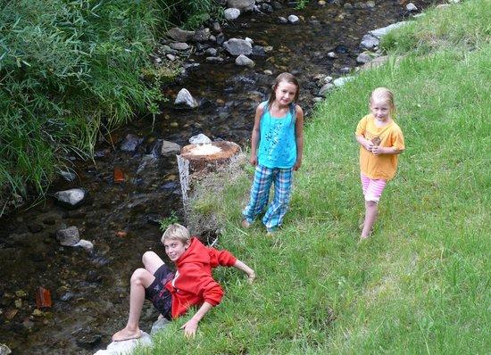 Reverse Creek Lodge: Playing in Reverse Creek behind cabin #10