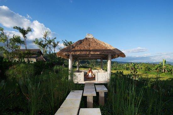 Sanak Retreat Bali: Spa Bale over the Pond