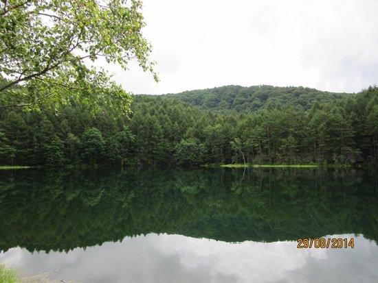 Mishakaike Pond: 御射鹿池1