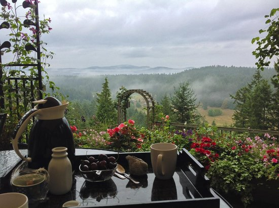 Hummingbird Hill Bed & Breakfast : View from the breakfast table