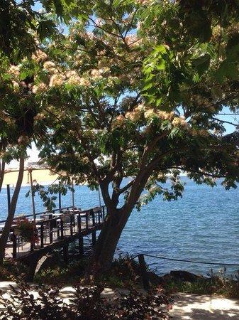 La Vela Most Perfect Spot On The Lago