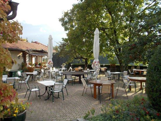 Hotel-Landhof Simeter: Terrasse