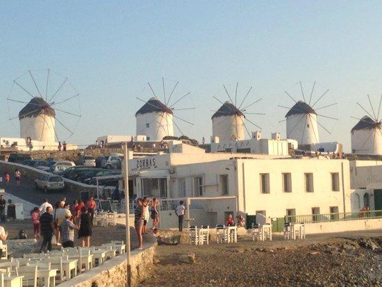 The Windmills (Kato Milli) : Windmills