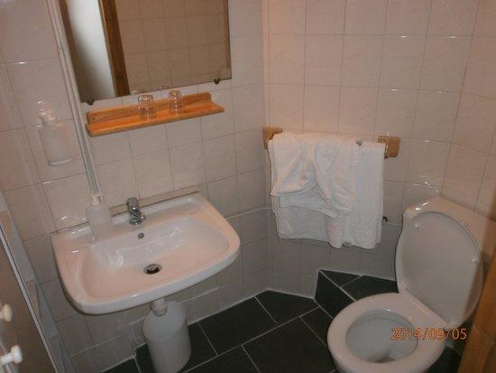 Hotel L'aiguille Verte: La salle de bains