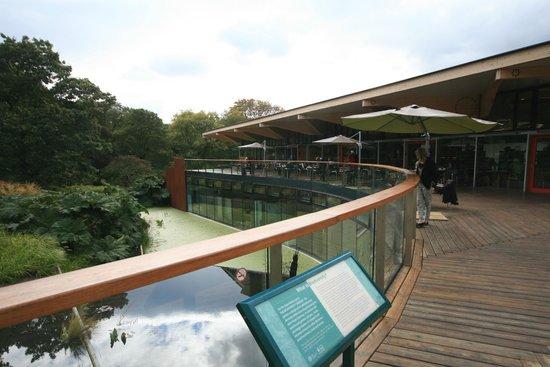 The Gateway Restaurant: Restaurant terrace