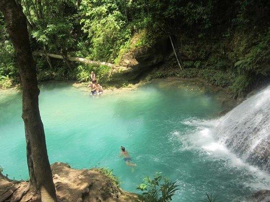 Island Gully Falls: Beautiful water