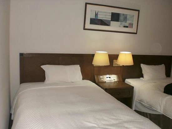 Hotel Atoll Emerald Miyakojima: スタンダードツイン(テラスなし)