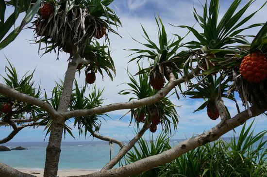 Dokuhama Beach