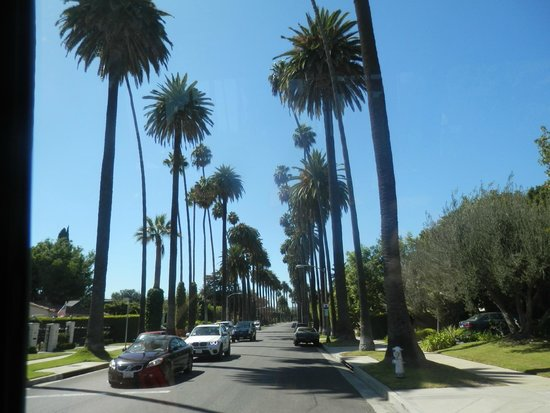 LA City Tours : Beverly Hills