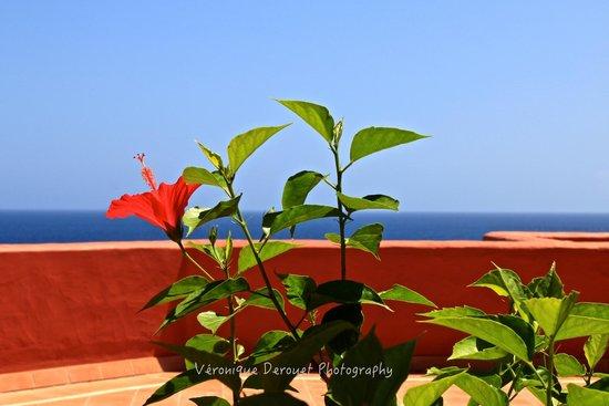 Sheraton La Caleta Resort & Spa, Costa Adeje, Tenerife : Hotel terrace