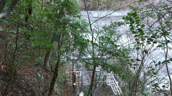 Sumatakyo Valley: 木々の茂みの無効につり橋が