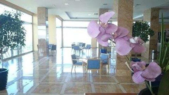 Hotel Best Benalmadena: Limpieza, confort y detalles nada más entrar al hotel HALL del Best Benalmádena