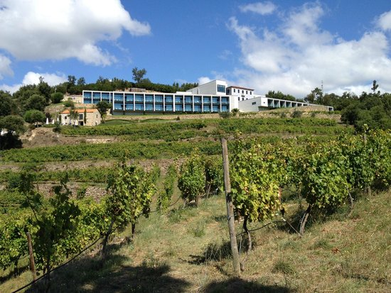 Douro Palace Hotel Resort & Spa : O hotel na encosta
