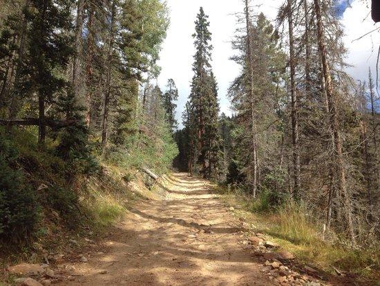 Mallette Park Nature Trail