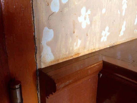 Ko Tao Resort: Stains on the walls