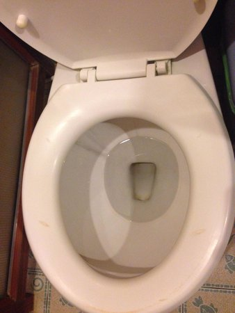 Ko Tao Resort: Nothing screams luxury like stains on a toilet seat