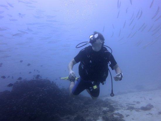 Bangtao Dive Center: Koh Racha Yai
