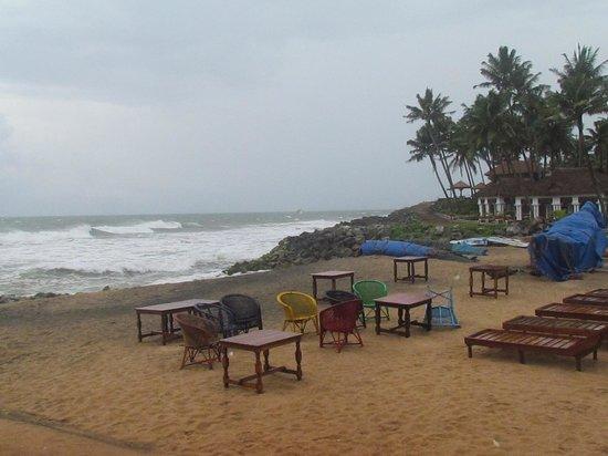Palm Tree Bungalow : Beach area
