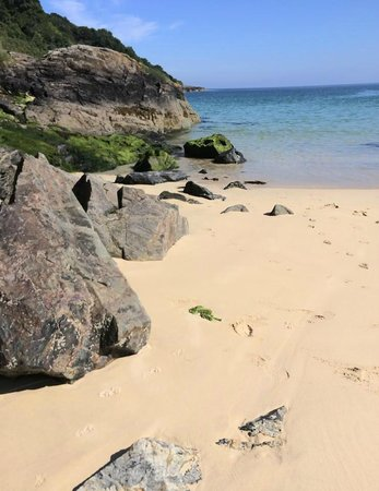 Carbis Bay Beach: From a morning stroll along the beach