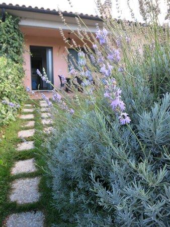 Residence Bartolini Ai Campi da Golf: il Residence No 2... fra fiori di lavanda