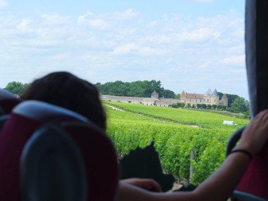 Office de Tourisme de Bordeaux : シャトーディケム