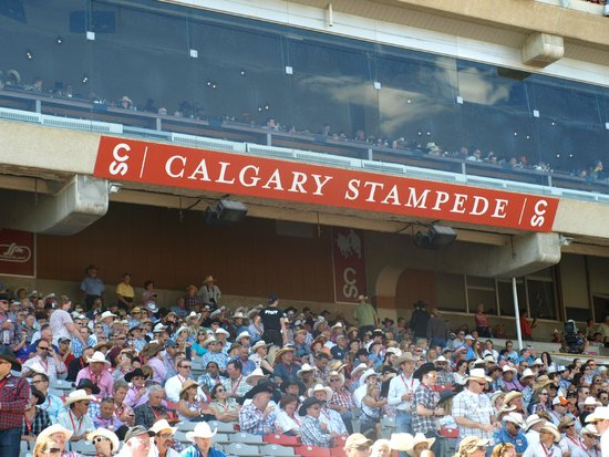 Calgary Stampede: At the Rodeo arena
