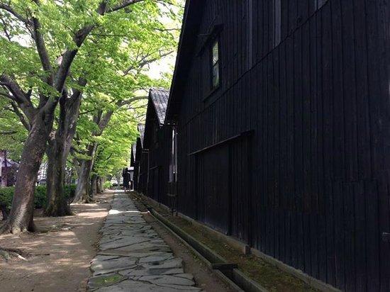 Sankyo Soko Storehouse : 倉庫裏のケヤキ並木