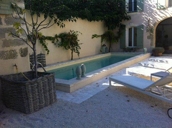 Mas à l'Improviste: piscine en pierre