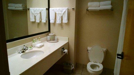 Holiday Inn Express Orange : Bathroom