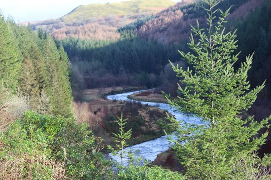 Hafod Uchtryd: The Ystwyth after it has emerged from its gorge in Hafod