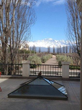 Cavas Wine Lodge: Vista a la llegada al hotel