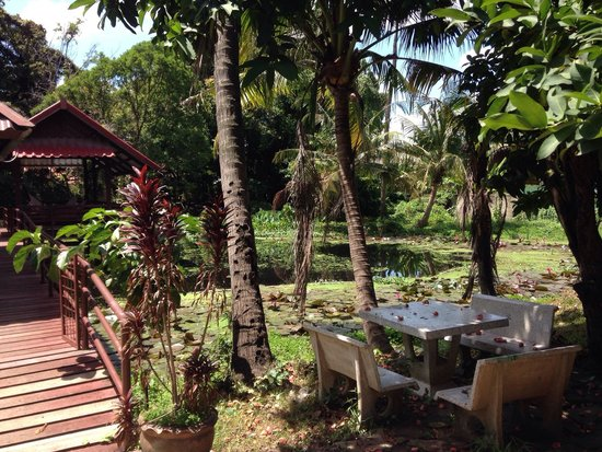 Baan Lotus Guest House : View from breakfast area.