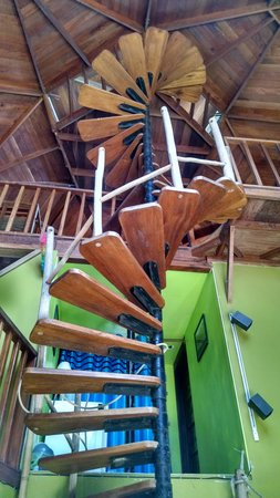 Belize Jungle Dome: For you Spiral Stair Fans out there