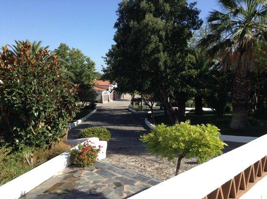 Horta da Moura - Hotel Rural: View of the garden, restaurant down the road