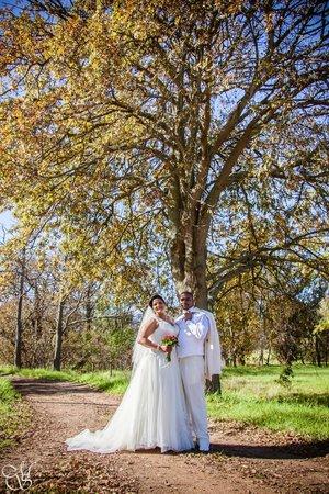 Vredenburg Manor House: Wedding
