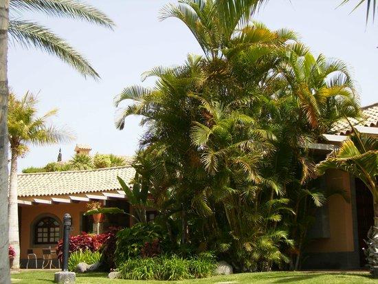 Dunas Maspalomas Resort: Jardín