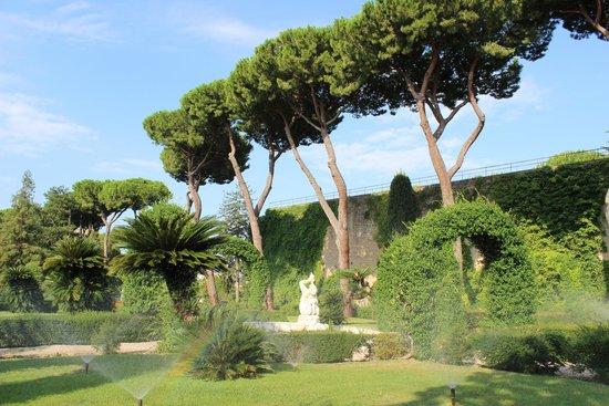 Carrani Tours: Vatican gardens